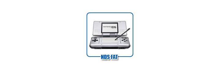 Nintendo DS Fat